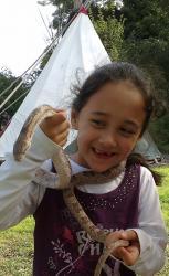 Meeting a snake